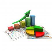 Экспресс-обследование предприятия на предмет оптимизации бизнес-процессов